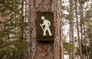 Nordic Walking @ Friedrich von Cotta-Schule